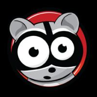 raccoon web