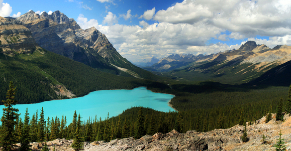 Peyto Lake by Frank Kovalchek