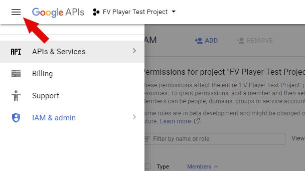 Google APIs menu